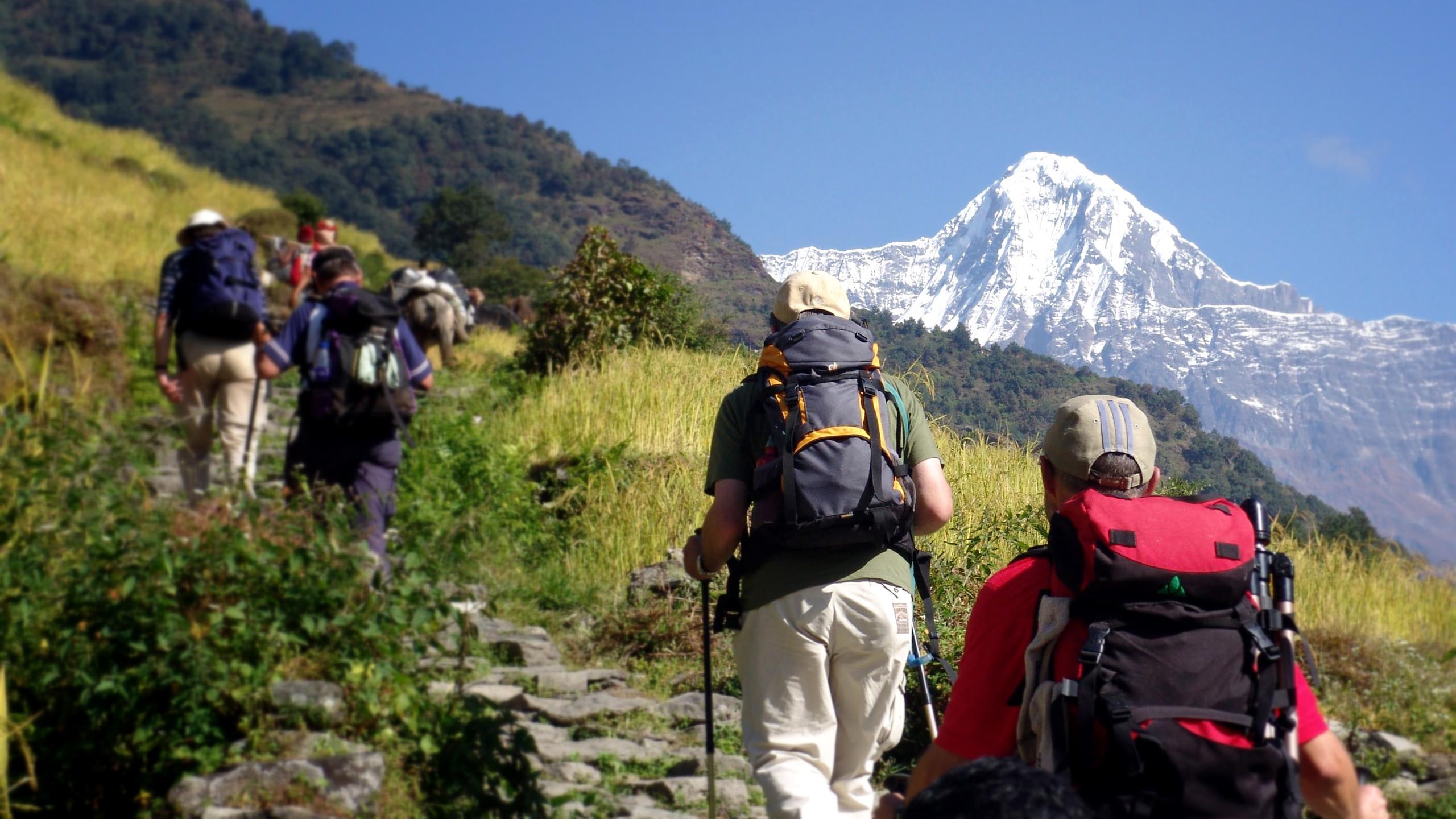 Asia Travel Advisory & Guide