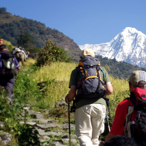 Spring Is The Ideal Season To Trek In Nepal