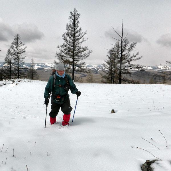 Terelj Winter
