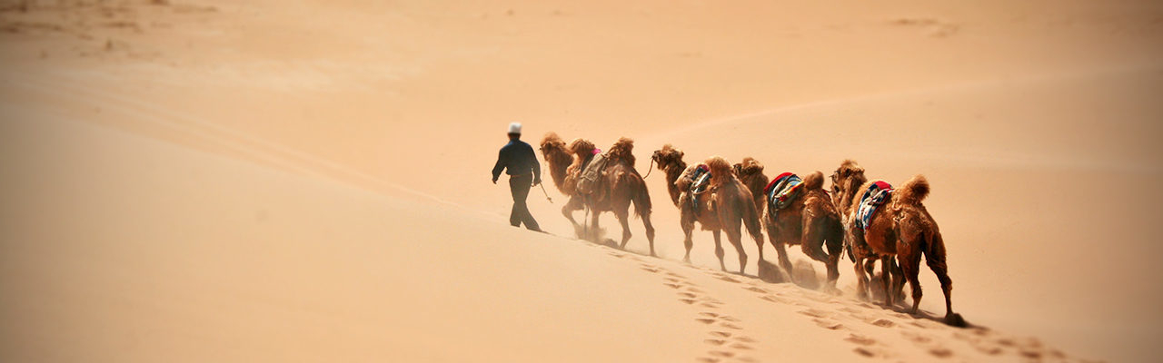 Silk Road Private Tour