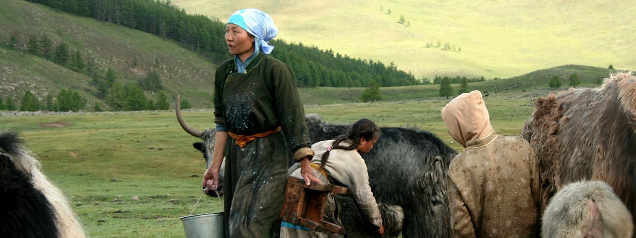 Mongolia private tours