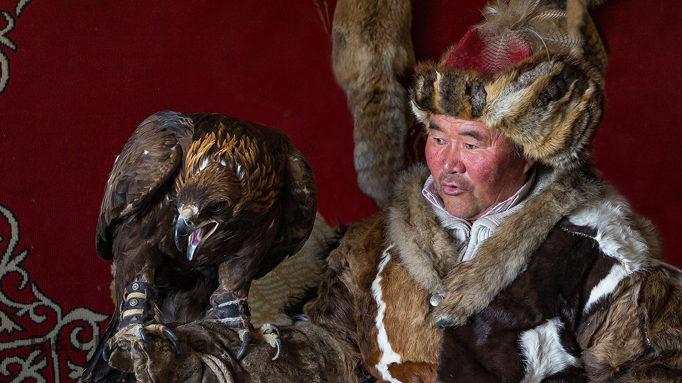 Eagle Hunter Sailo