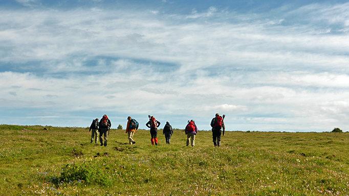 Trekking 5